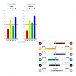 TTI Talent Insights™ DISC