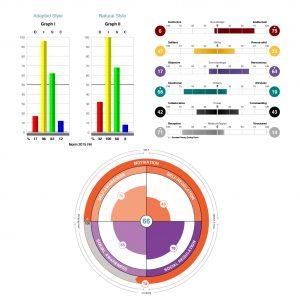 TriMetrix EQ TTI DISC Assessments